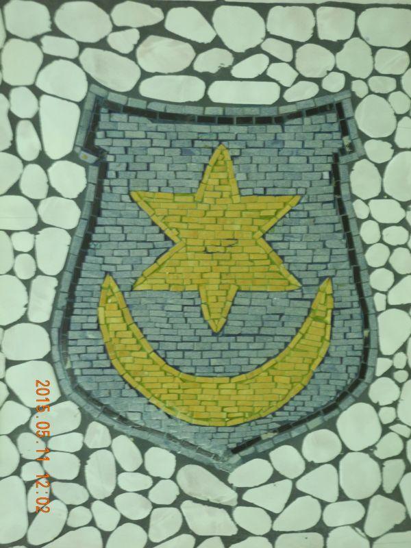 DSCN6759